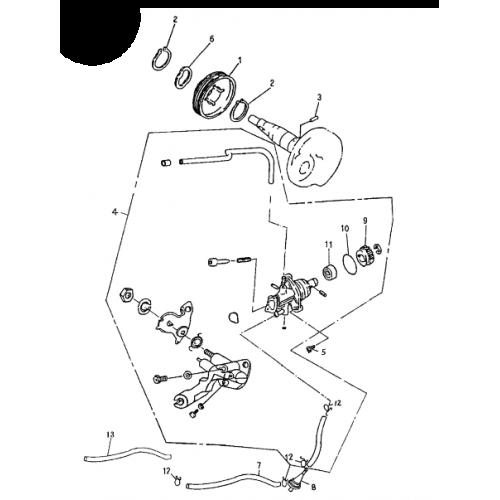 Oil Pump (Bombardier Mini DS 50 2T)