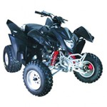 Adly ATV 300xs Assault