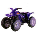 Blazer 90cc ATV